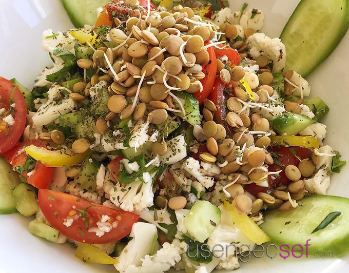 usengec-sef-lifeco-detoks-raw-vegan-beslenme