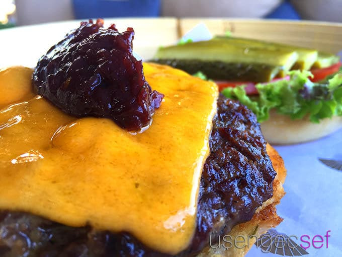 mandarin-oriental-bodrum-burger-pool